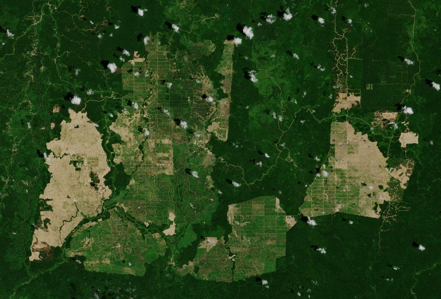 Satelitarna rewolucja w rolnictwie
